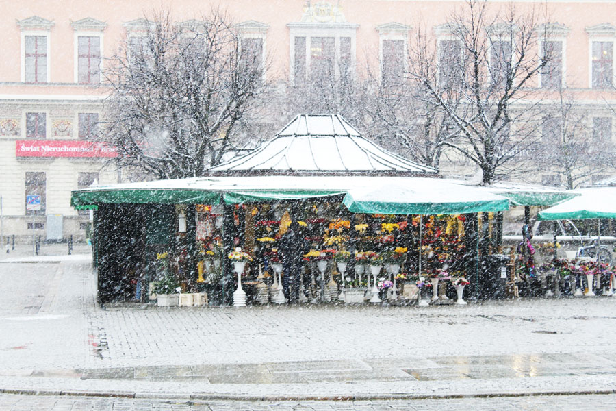 The snowy streets of Wroclaw