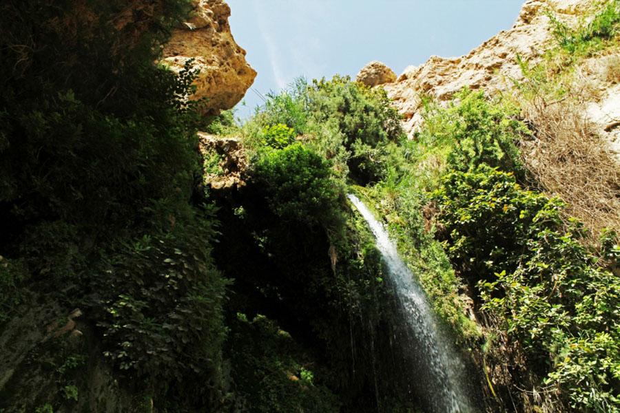 visiting Ein Gedi