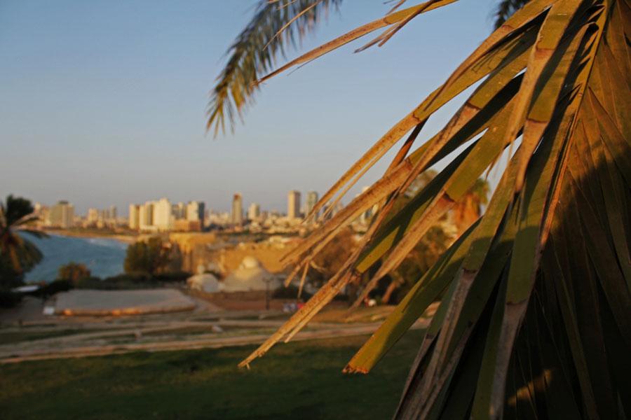 middle east adventure: last day in Tel Aviv