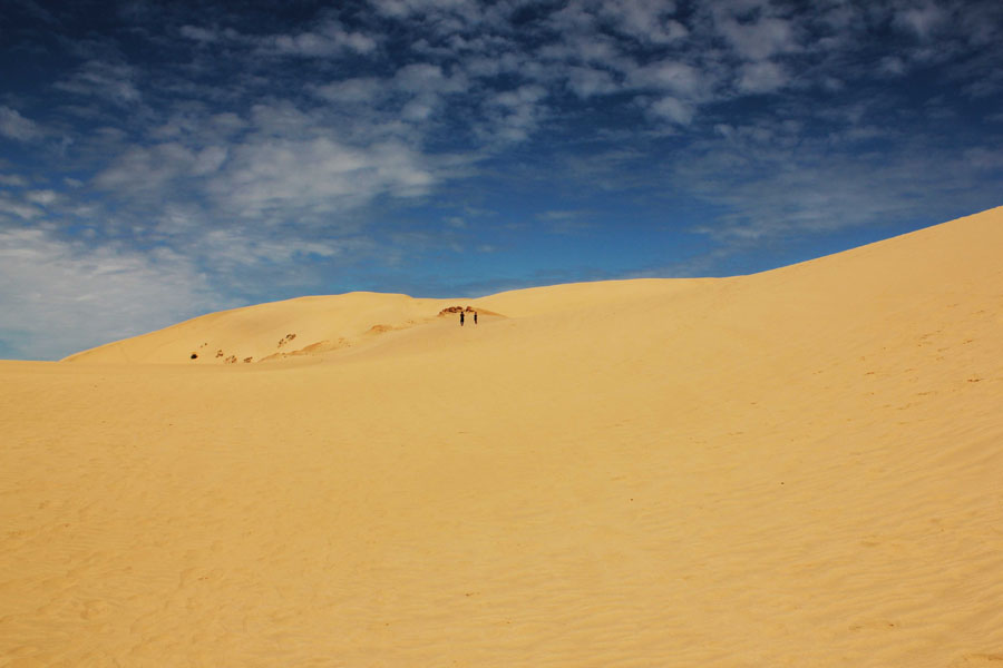 Te Paki Sand Dunes in New Zealand.