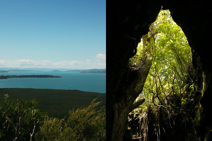 Views from Rangitoto Island, New Zealand