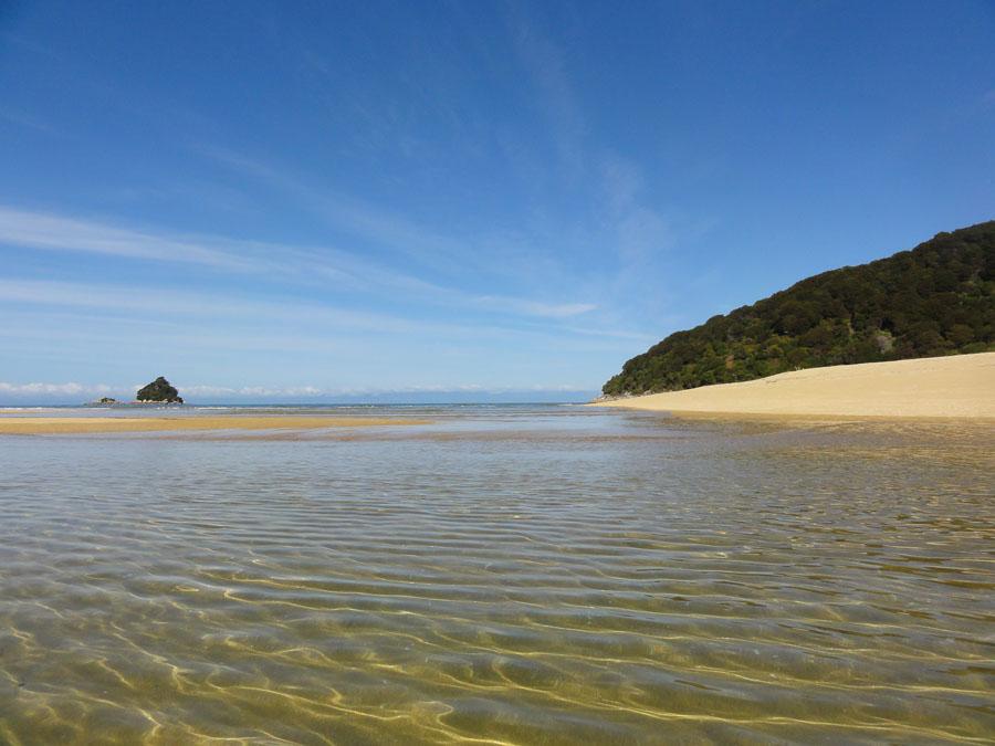 The shore of New Zealand's Abel Tasman Park.