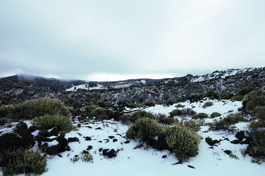 snow on Mount Teide