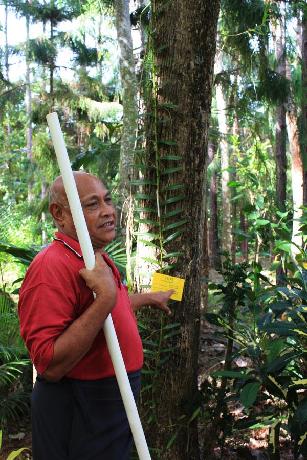 Explaining the botanical Gardens of Vava'u, Tonga.