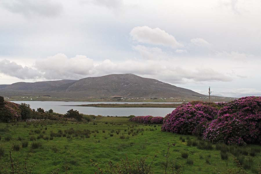 View over the fields of Achill Island.