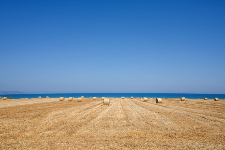 The fields and the sea of Cyprus.