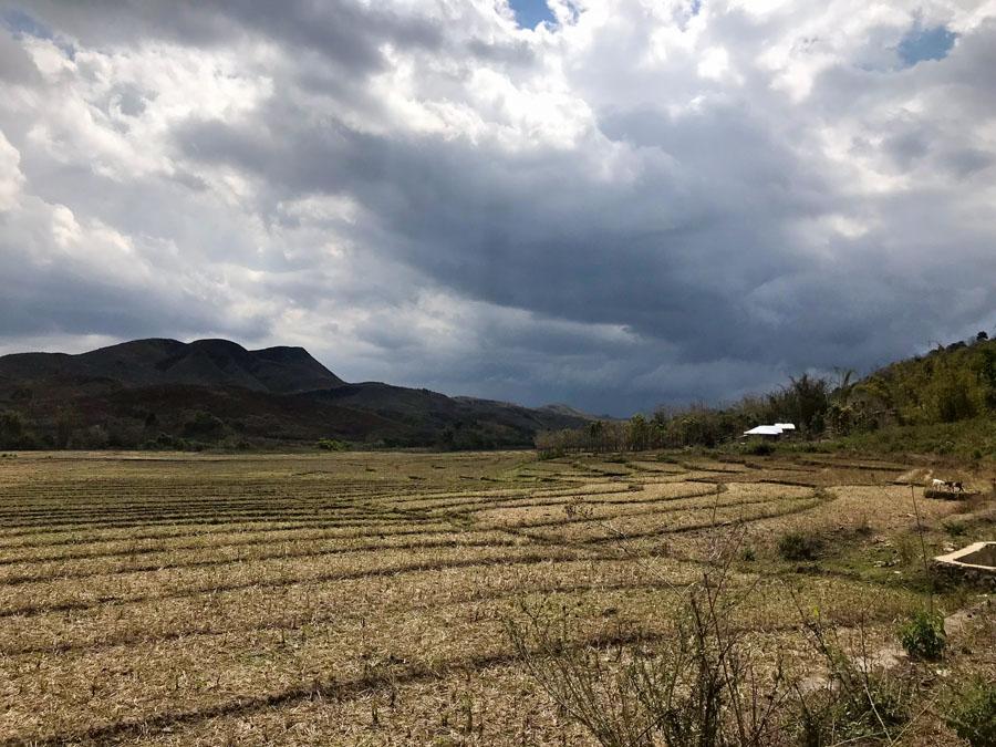 fields around Wae Rebo