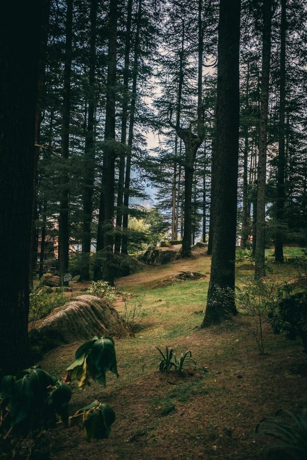Hidimba Devi Forest Temple
