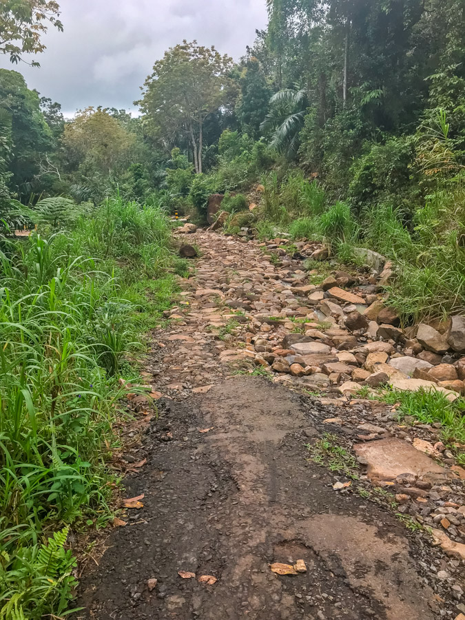 road to wae rebo traditional village