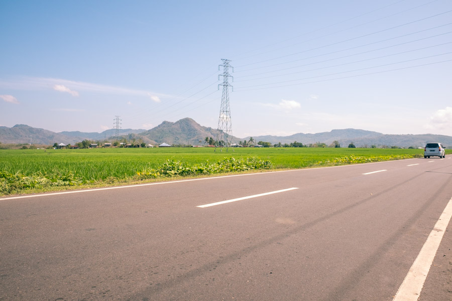 trans-flores highway