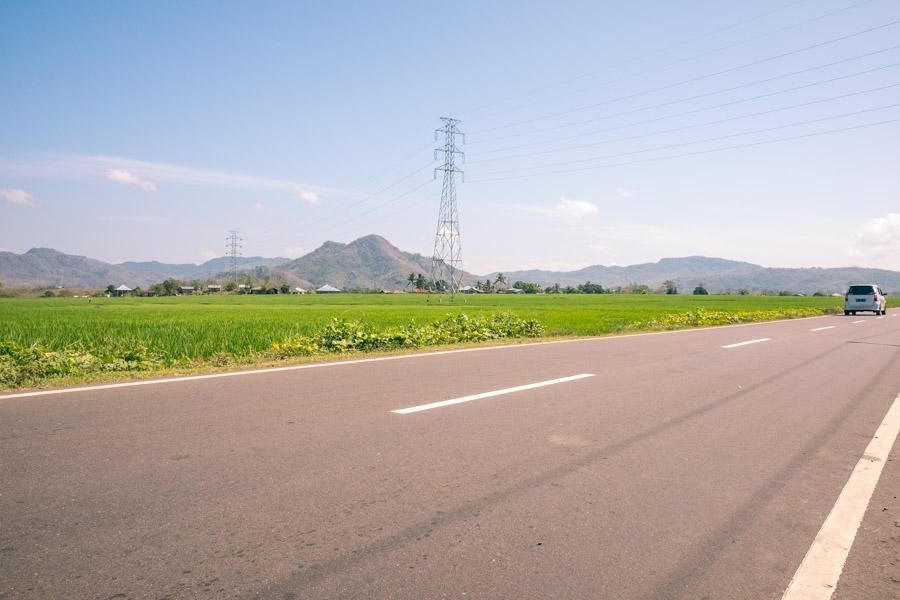 trans-flores highway