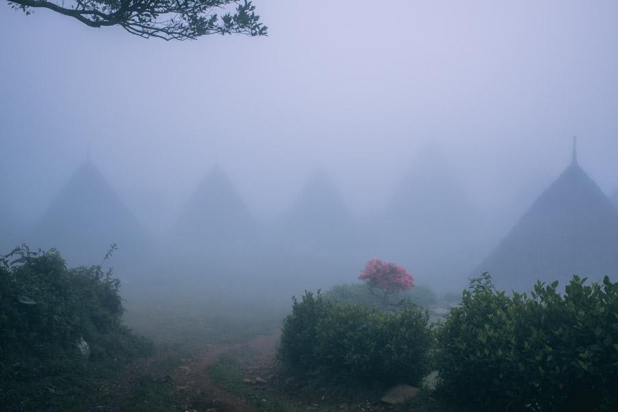 wae rebo traditional village