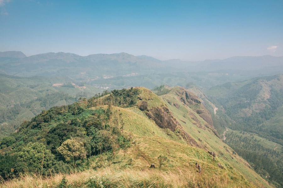 wanderlusting update - Kerala